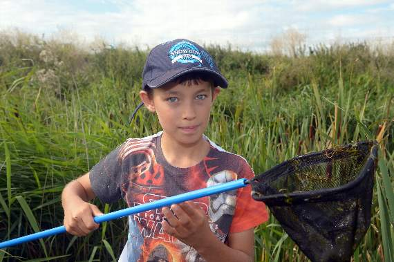 Pond dippers uncover life in the murky depths of Rainham Marshes
